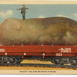 Exaggerated Postcards from the 1900's