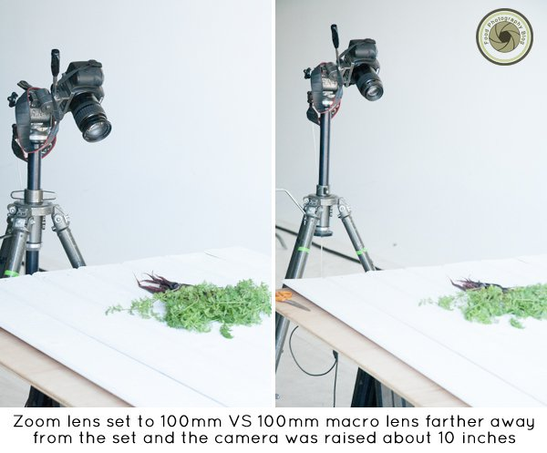 Zoom Lens VS Prime Lens | Food Photography Blog