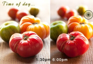 What is the best time of day to photograph food?