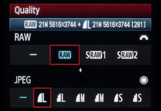 What is the Difference Between RAW and JPEG Files?