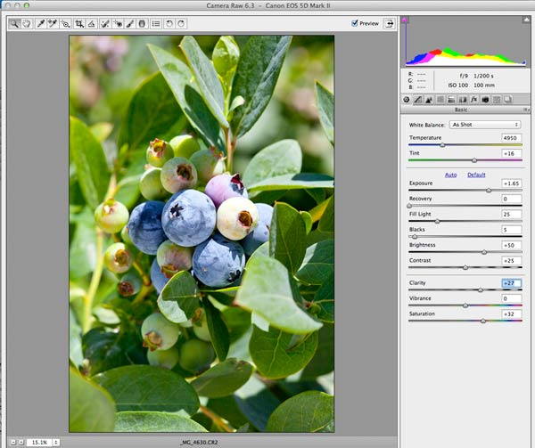 RAW VS JPEG | Food Photography Blog