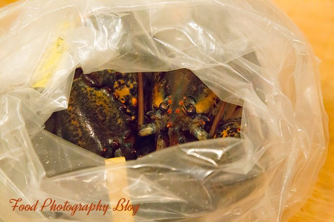 Lobster Bake | Food Photography Blog