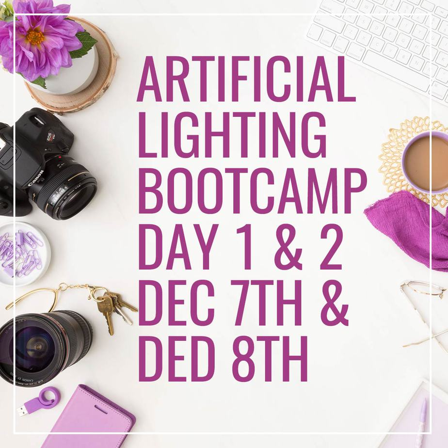 Artificial Lighting Bootcamp Both Days